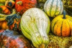 1_Harvest-Color-denoise-denoise
