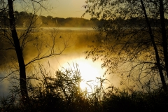 Morning on a Marsh- Lindenhurst IL