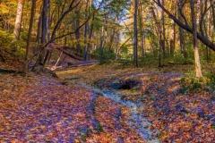Trickling Stream - Oglesby IL