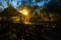 Morning Glow - Lindenhurst IL