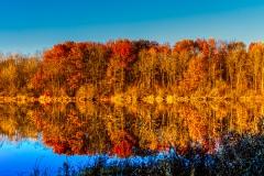 A Reflection of Autumn - Elk Grove Village, IL.