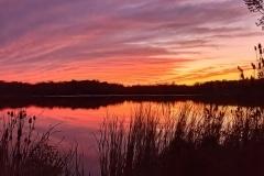 A Subdued Sunset (Landscape) - Elk Grove Village IL.