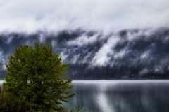 Cloudy and Overcast - Quinault WA.