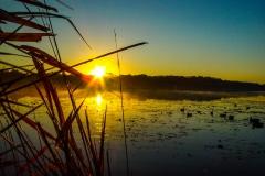 Sunrise on Deep Lake - Lake Villa IL.