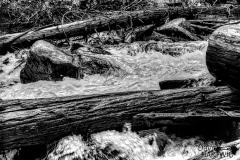 Water and Wood - Northern Idaho.