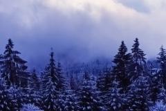 Blue Winter in Germany - Bavaria Germany.