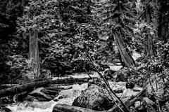 Northern Wilderness - Northern Idaho