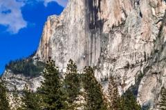 Half Dome - Yosemite N.P. CA.