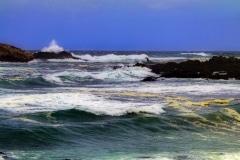 Monterey Surf - Monterey CA.