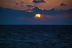 Ocean Sunrise - Key Largo, FL,