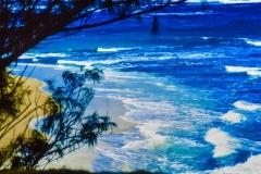 Swim Time - Maui HI.