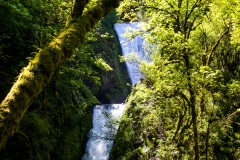 Double Fall - Columbia River Gorge OR.