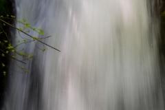Splash at Royal Gorge - Columbia River Gorge OR.
